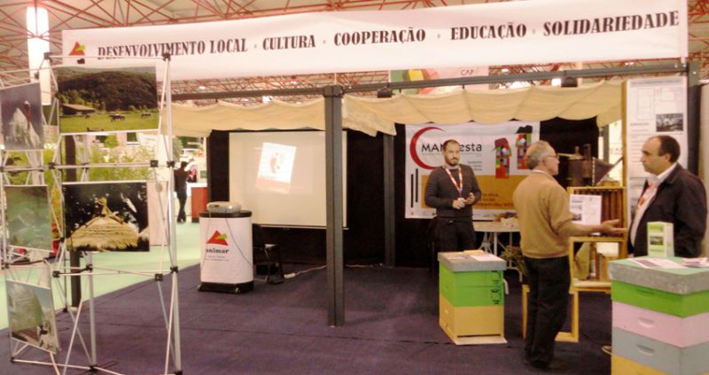 stand-1